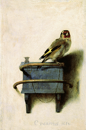 TheGoldfinch Picture credit : Wikipedia